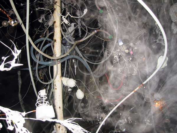 2007mondnacht_5272.jpg